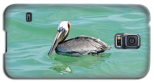 The Napping Pelican Galaxy S5 Case by Margie Amberge