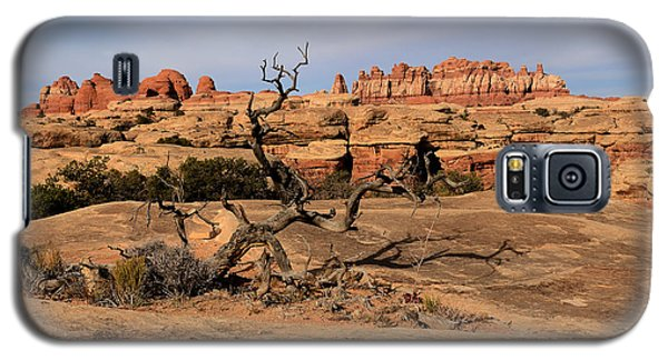 The Needles At Canyonlands National Park Galaxy S5 Case