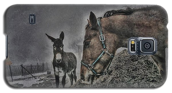 Galaxy S5 Case featuring the photograph The Old Grey Mare by Kimberleigh Ladd
