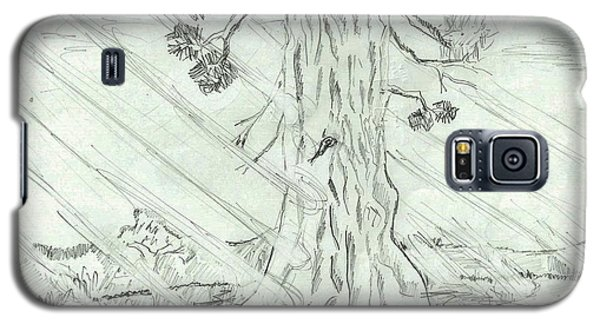 Galaxy S5 Case featuring the drawing The Old Tree In Spring Light  - Sketch by Felicia Tica