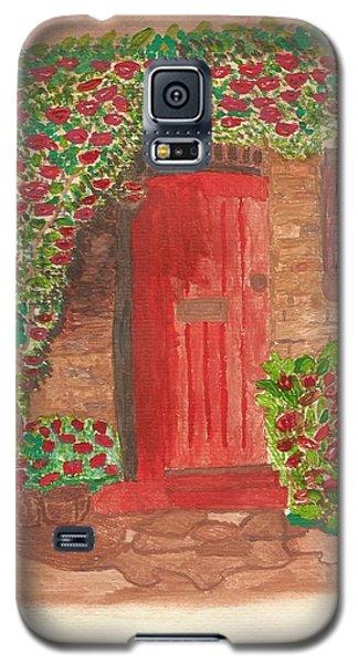 The Orange Door Galaxy S5 Case