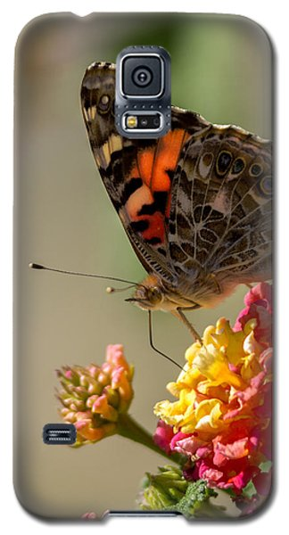 The Painted Lady Galaxy S5 Case