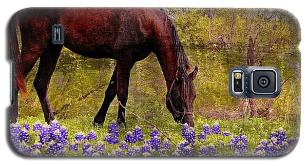 Galaxy S5 Case featuring the photograph The Pasture by Kathy Churchman