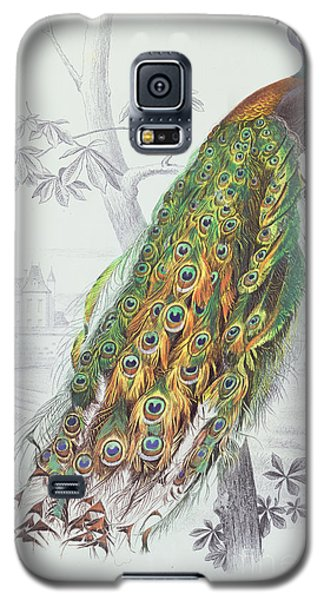 Peacock Galaxy S5 Case - The Peacock by A Fournier