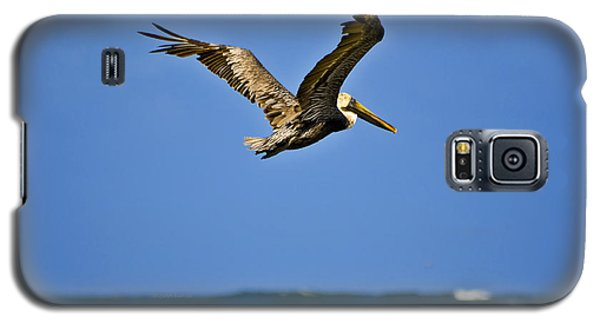 Galaxy S5 Case featuring the photograph The Pelican And The Sea by DigiArt Diaries by Vicky B Fuller