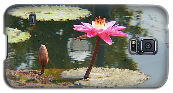 The Pink Water Lily With Lily Pads - One Galaxy S5 Case by J Jaiam
