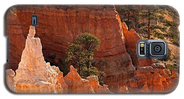 The Popesunrise Point Bryce Canyon National Park Galaxy S5 Case