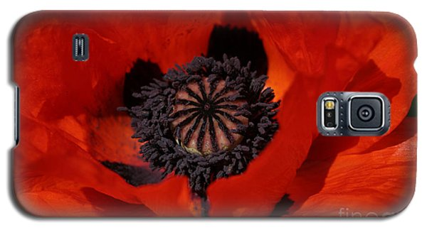 The Poppy Is Also A Flower Galaxy S5 Case