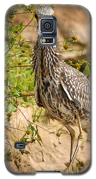 Galaxy S5 Case featuring the photograph The Pose by Lena Wilhite