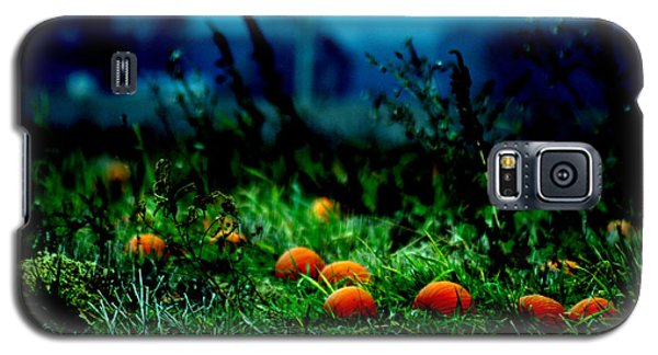 Galaxy S5 Case featuring the photograph The Pumpkin Patch by Lesa Fine