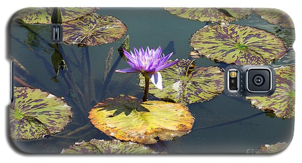 The Purple Water Lily With Lily Pads - Two Galaxy S5 Case by J Jaiam
