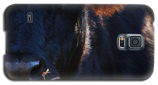 The Quiet One Galaxy S5 Case by J L Zarek