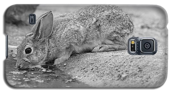 The Rabbit And The Water Galaxy S5 Case