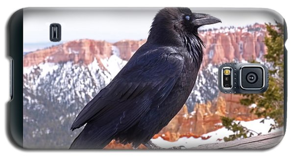 The Raven Galaxy S5 Case