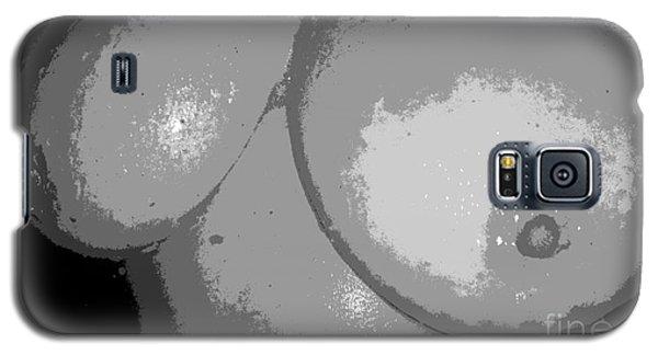 Gray Galaxy S5 Case by Alys Caviness-Gober
