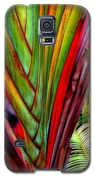 The Red Jungle Galaxy S5 Case by Joseph J Stevens