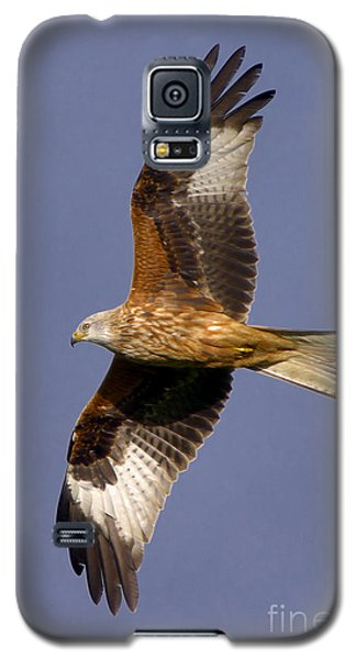 The Red Kite Galaxy S5 Case
