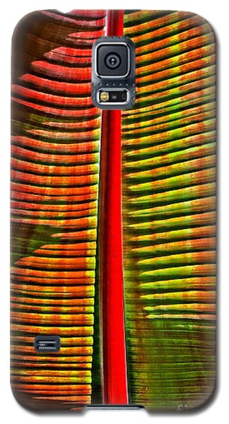 The Red Palm Galaxy S5 Case by Joseph J Stevens