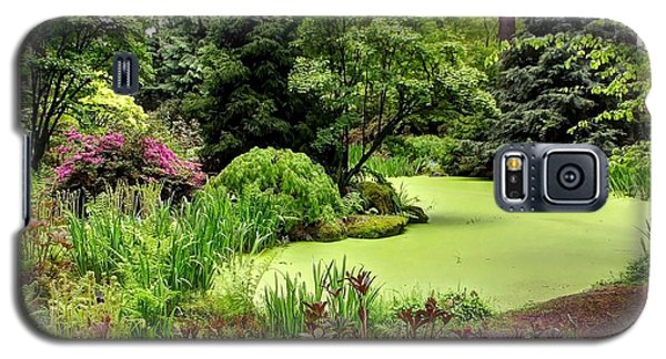 The Rhododendron Species Foundation Fern Pond  Galaxy S5 Case by Chris Anderson