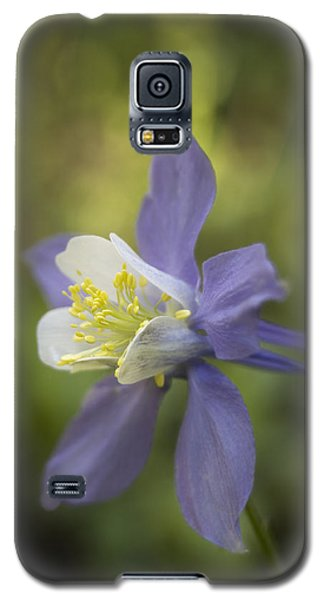 The Romanticist Galaxy S5 Case by Morris  McClung