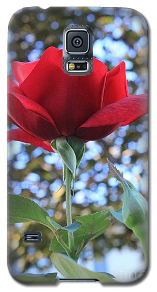 The Rose And Bud Galaxy S5 Case