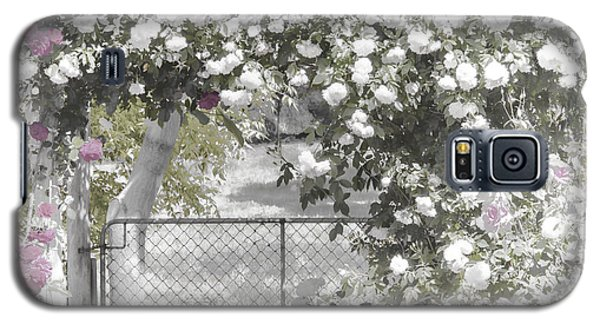 Galaxy S5 Case featuring the photograph The Rose Arbor by Elaine Teague