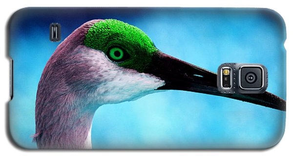 The Sandhilll Crane  Galaxy S5 Case