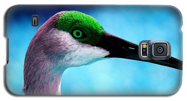 The Sandhilll Crane  Galaxy S5 Case