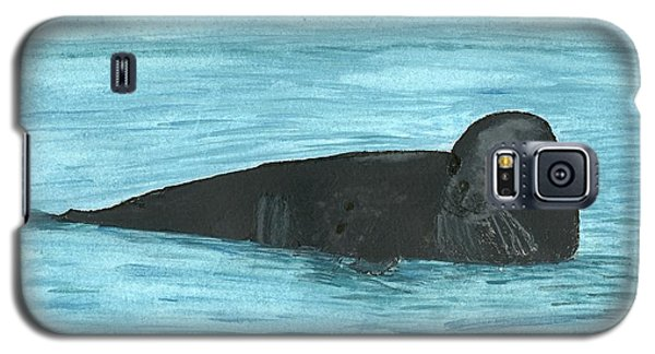 The Seal Galaxy S5 Case by Tracey Williams