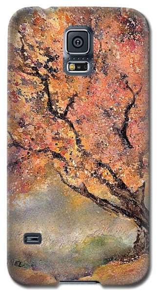 The Sentinel Galaxy S5 Case