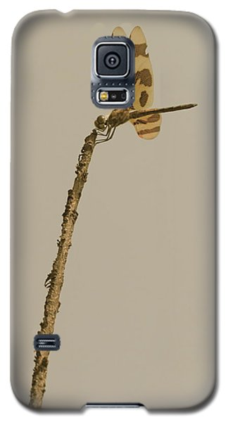 The Sentinel Galaxy S5 Case by Tim Good