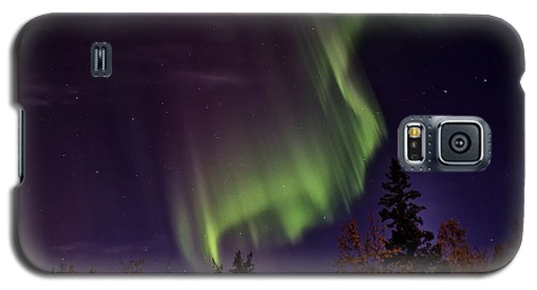 Galaxy S5 Case featuring the photograph The September Aurora Fairbanks Alaska by Michael Rogers