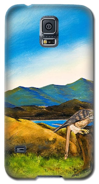 The Sky Is The Limit Galaxy S5 Case by Susan Culver