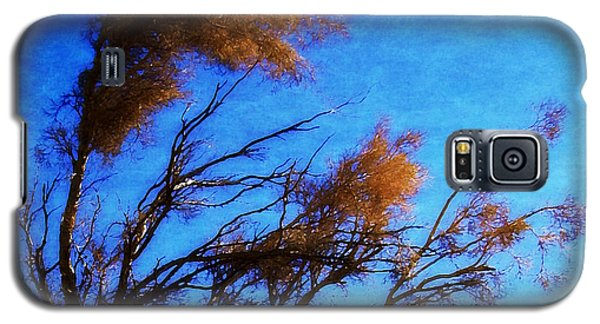 Galaxy S5 Case featuring the photograph The Smoke Tree by Timothy Bulone
