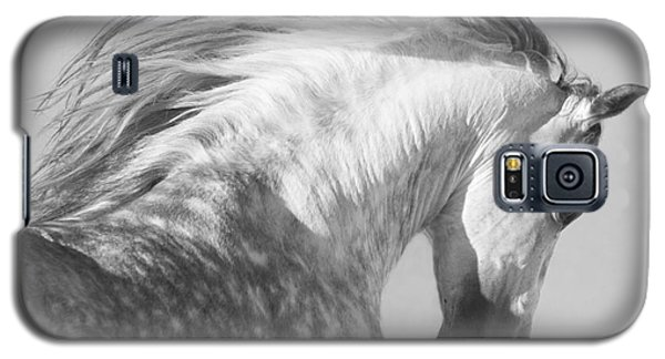 The Spanish Stallion Tosses His Head Galaxy S5 Case by Carol Walker