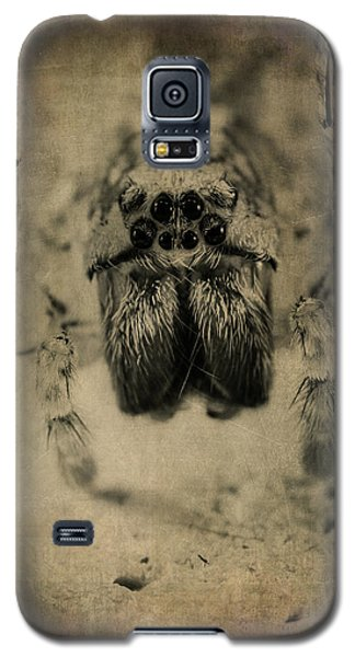 The Spider Series Xiii Galaxy S5 Case