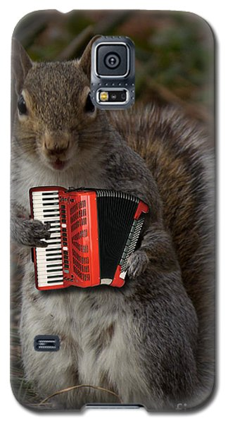 The Squirrel And His Accordion Galaxy S5 Case