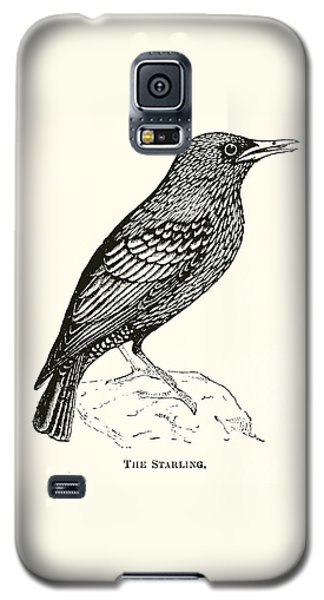 The Starling Galaxy S5 Case