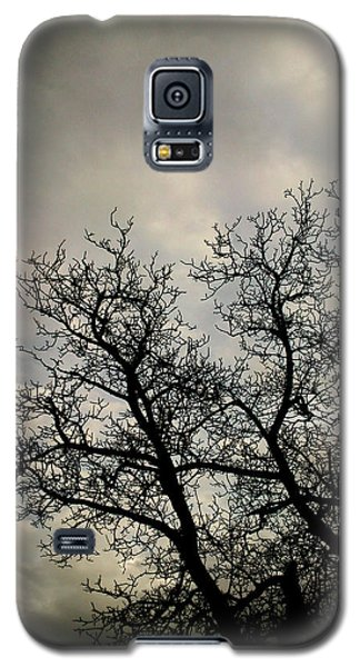 The Storm Galaxy S5 Case by Lucy D