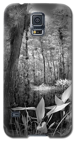 Galaxy S5 Case featuring the photograph The Strand by Bradley R Youngberg