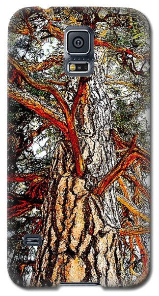 Galaxy S5 Case featuring the photograph The Strong One by Joseph J Stevens