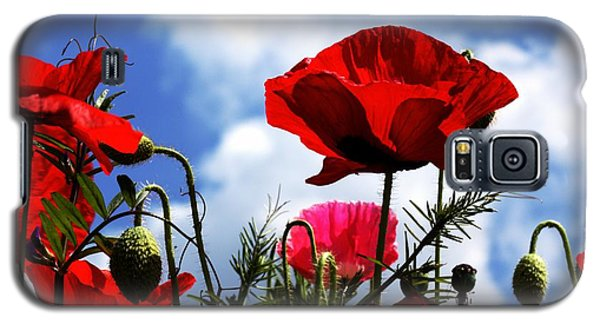 Galaxy S5 Case featuring the photograph The Summer Poppy by Baggieoldboy