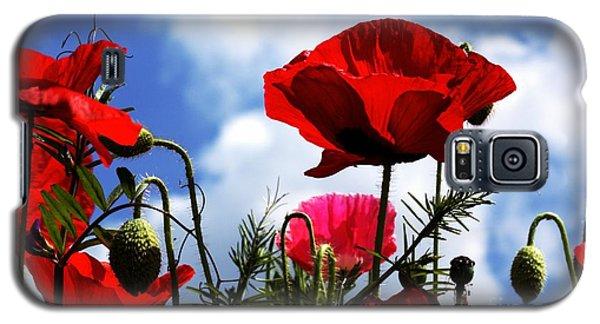 The Summer Poppy Galaxy S5 Case by Baggieoldboy