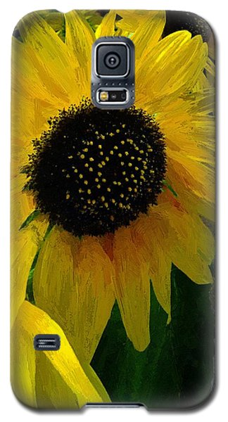The Sun King Galaxy S5 Case