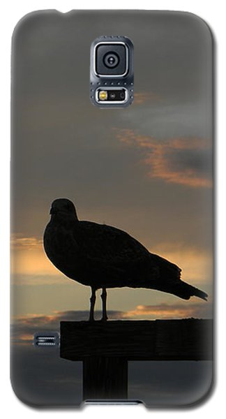 Galaxy S5 Case featuring the photograph The Sunset Perch by Jean Goodwin Brooks