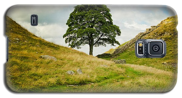The Sycamore Gap Along Hadrians Wall Galaxy S5 Case by MaryJane Armstrong