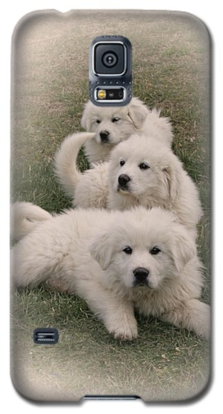 The Three Galaxy S5 Case by Bonnie Willis