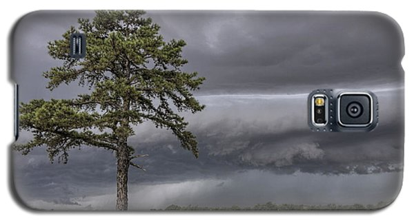 The Thunder Rolls - Storm - Pine Tree Galaxy S5 Case