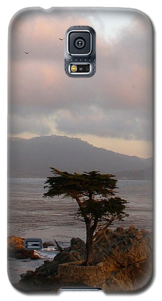 The Tree Galaxy S5 Case