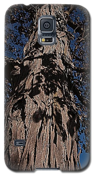 Galaxy S5 Case featuring the photograph The Tree Of Life by Deborah Klubertanz